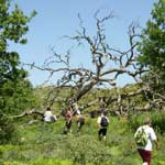 Individual Hiking Tour - Information and Prices - 3