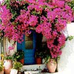 Wandelingen in Kreta met accommodatie in Rethymno - 5