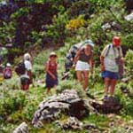 Individual Hiking Tour - Information and Prices - 1